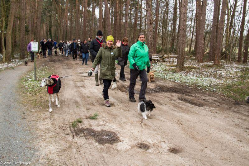 HZ hondenwandeling-7341