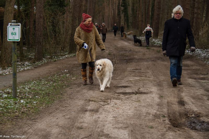 HZ hondenwandeling-7350