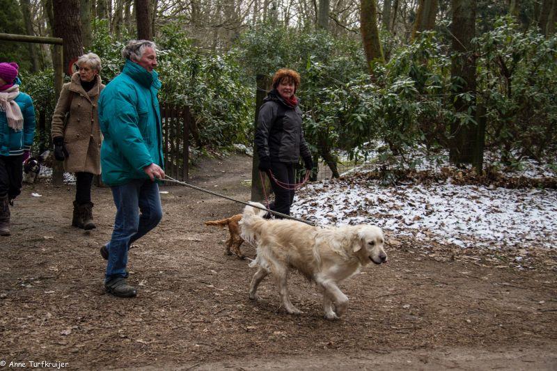 HZ hondenwandeling-7363