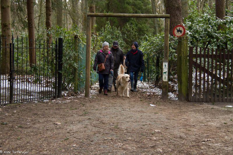HZ hondenwandeling-7367