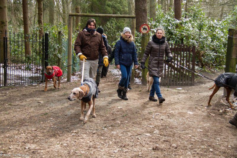 HZ hondenwandeling-7390