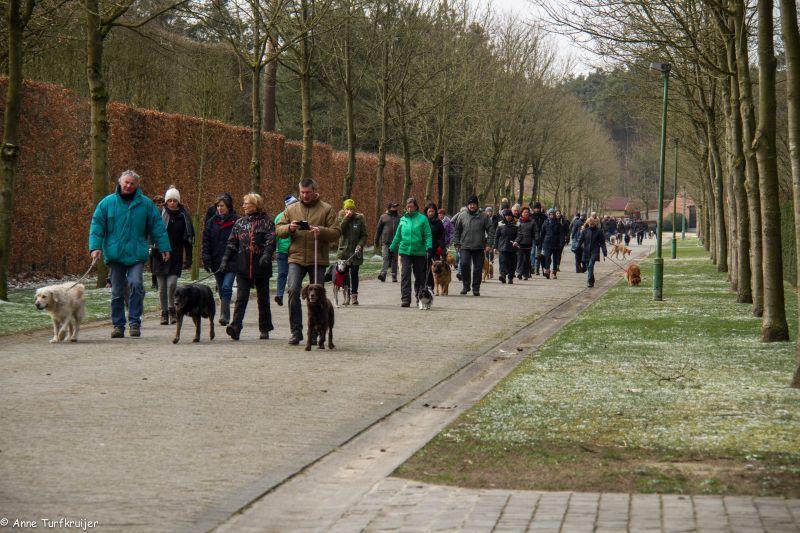 HZ hondenwandeling-7398