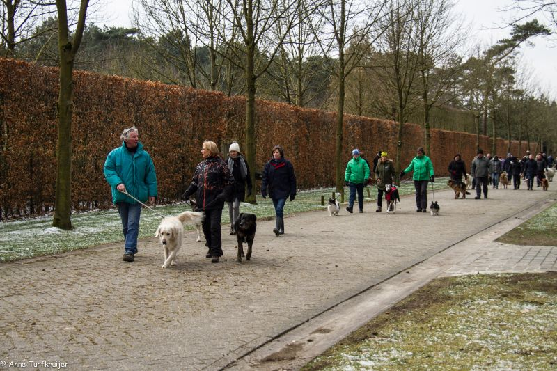 HZ hondenwandeling-7399