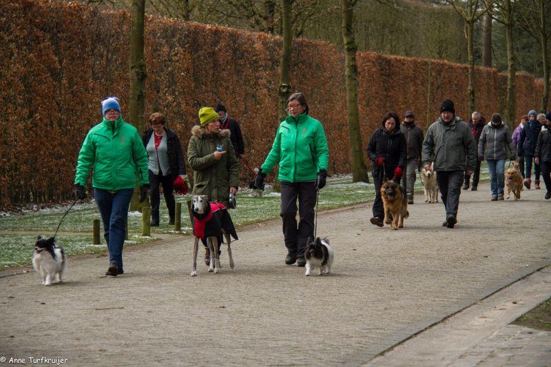 HZ hondenwandeling-7400
