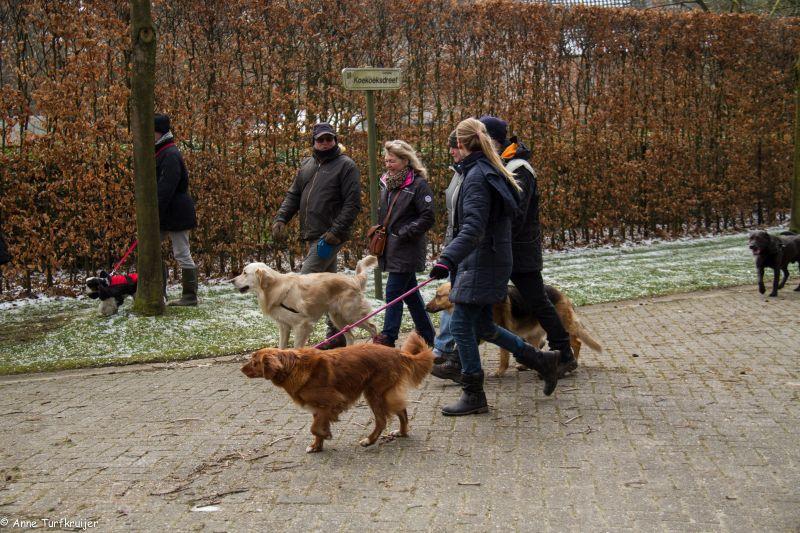 HZ hondenwandeling-7401