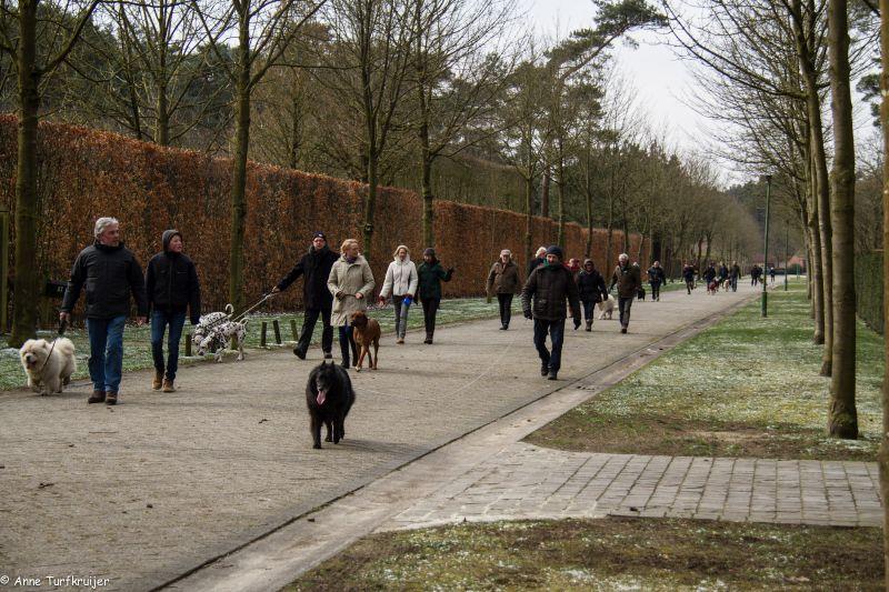 HZ hondenwandeling-7409