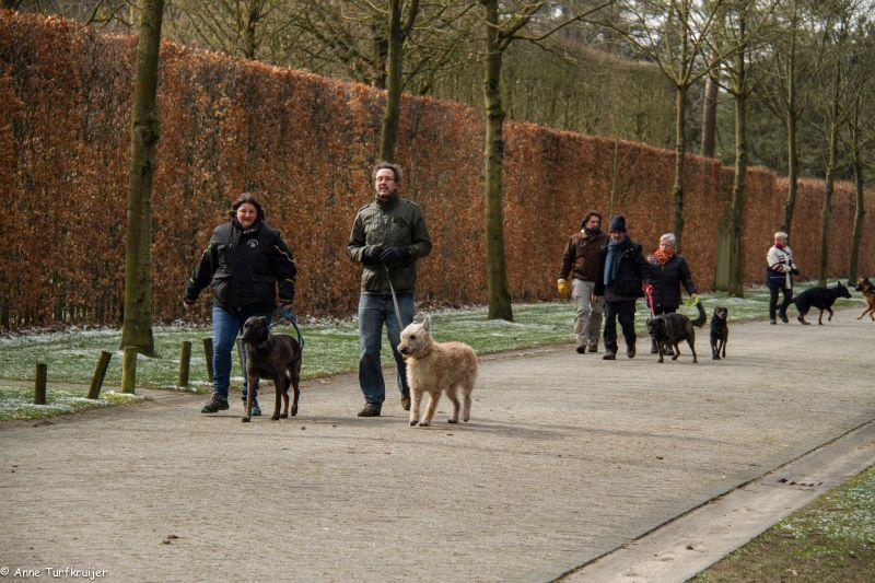 HZ hondenwandeling-7411
