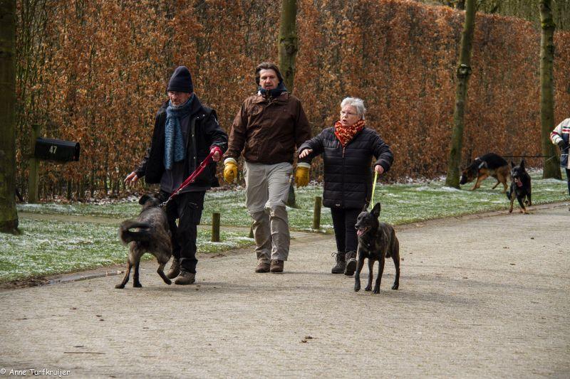 HZ hondenwandeling-7413