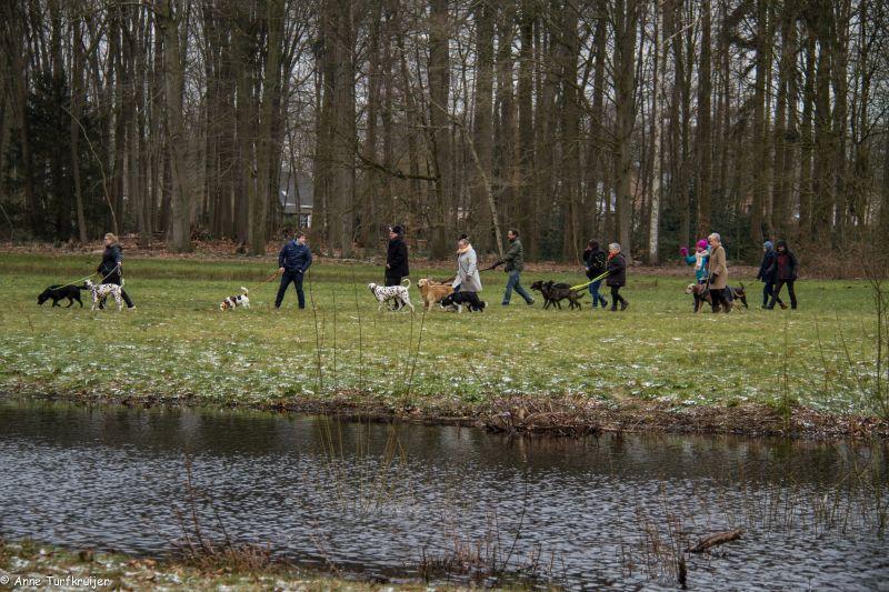 HZ hondenwandeling-7424