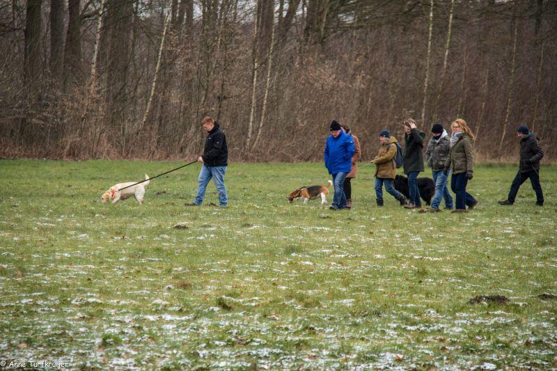 HZ hondenwandeling-7430