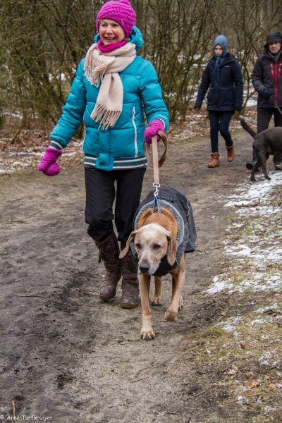 HZ hondenwandeling-7432