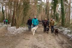 HZ hondenwandeling-7336