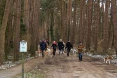 HZ hondenwandeling-7347
