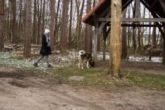HZ hondenwandeling-7348