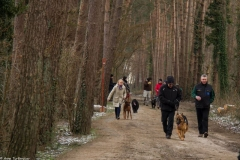 HZ hondenwandeling-7352