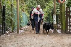 HZ hondenwandeling-7385