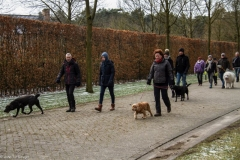HZ hondenwandeling-7402