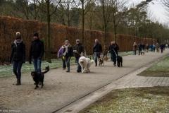 HZ hondenwandeling-7403
