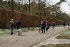 HZ hondenwandeling-7406