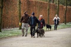HZ hondenwandeling-7412