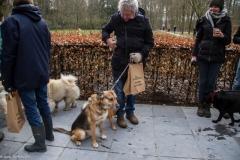 HZ hondenwandeling-7445